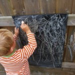 Mark making in the garden